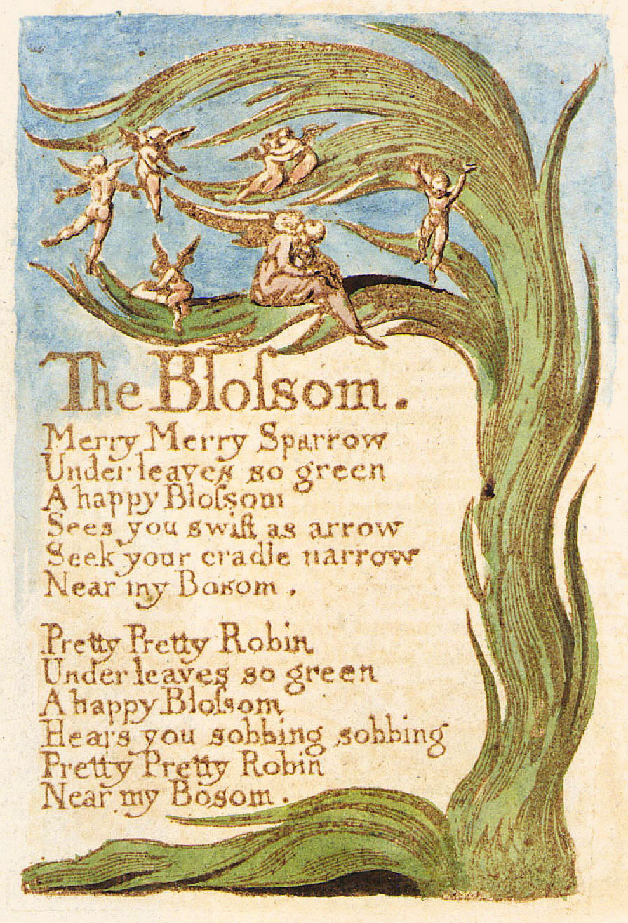 the echoing green by william blake essay