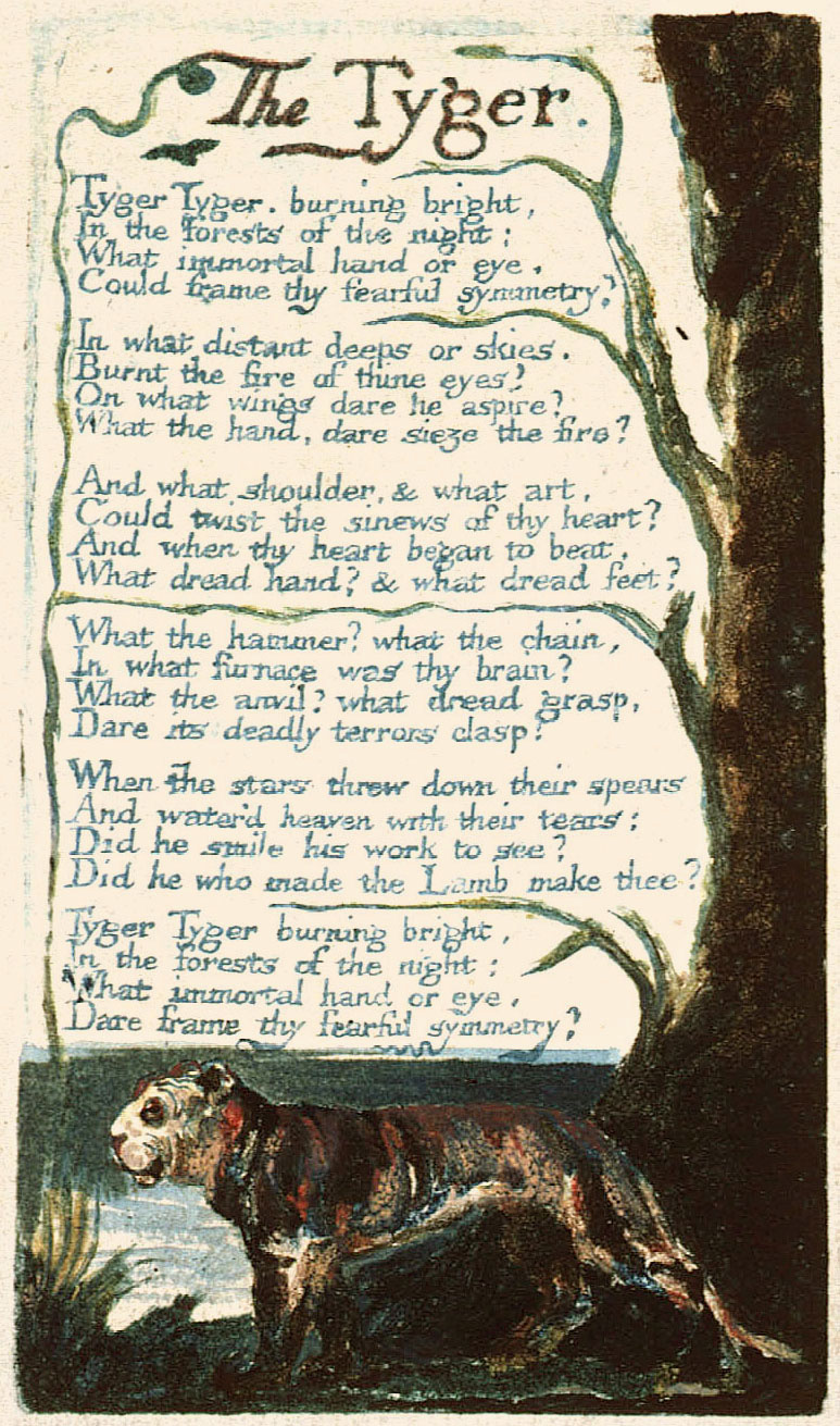 "the imagery in the poem the tyger by william blake The tyger • ""the tyger,"" along with ""the lamb,"" first appeared in a collection of poems entitled songs of innocence in 1789 in 1794, blake combined these poems with a."