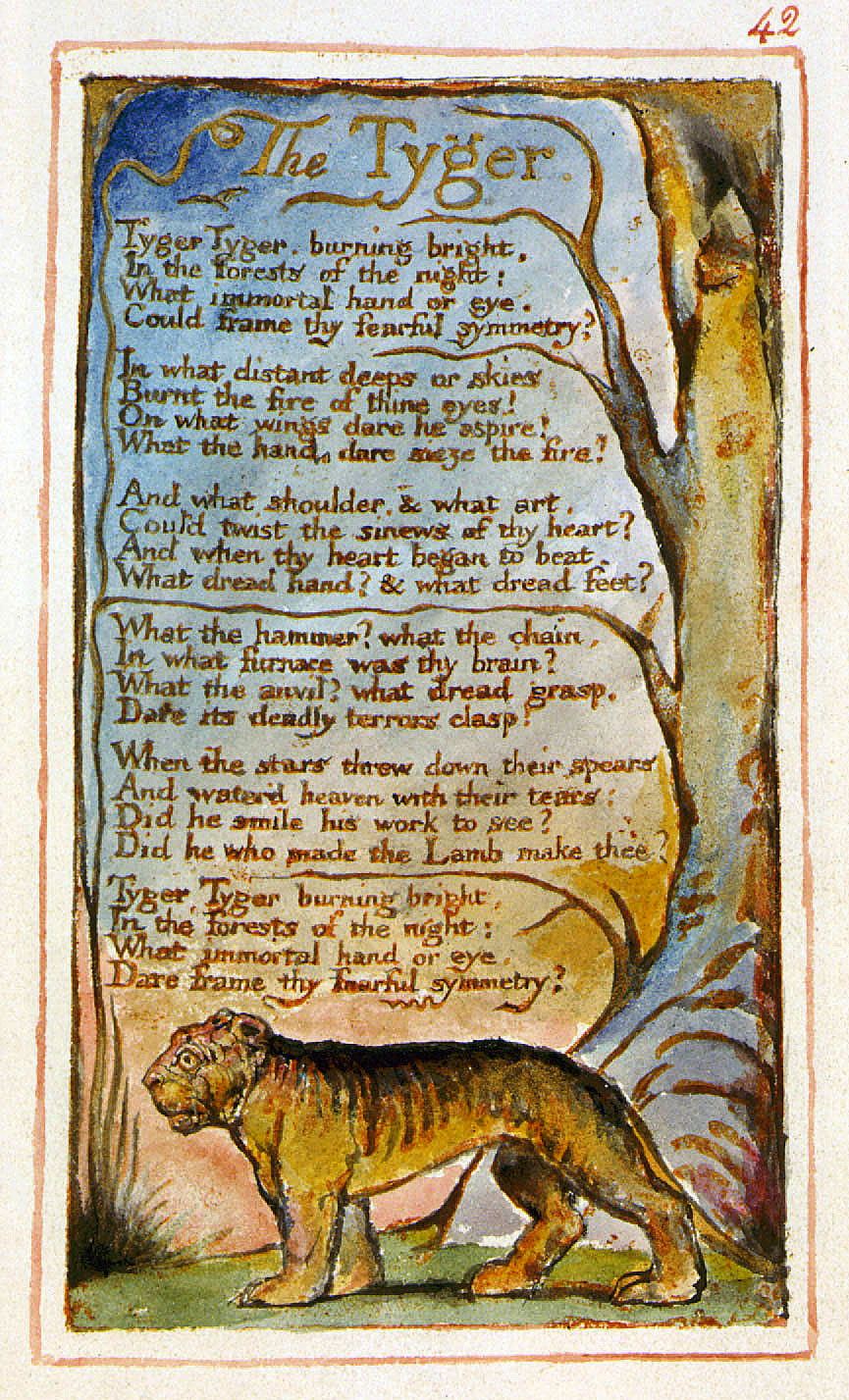 a comparison of william blakes the lamb and the tyger Comparison/contrast of the tyger and the lamb by blake essays william blake's the tyger and the lamb are both very short poems in which the author poses rhetorical questions to what, at a first glance, would appear to be a lamb and a tiger.
