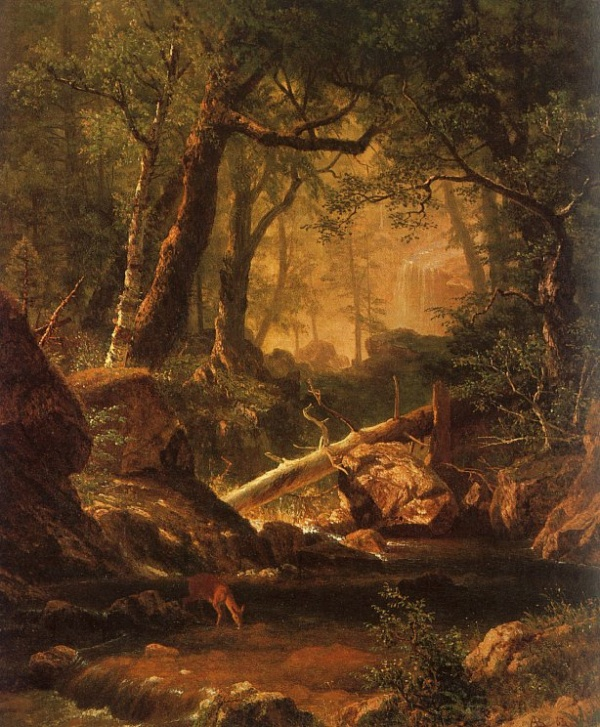Альберт Бирштадт | XIXe | Albert Bierstadt (326 фото)