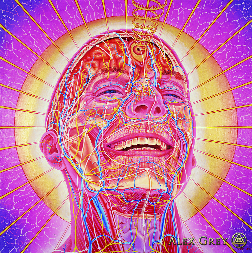 a biography of the musician and artist alex grey