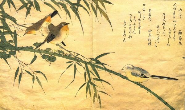 Китагава Утамаро (Kitagawa Utamaro) - японский художник (62 фото)