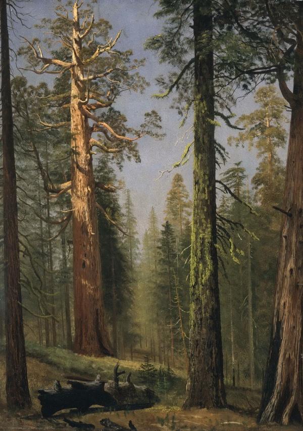 Подборка репродукций картин из галереи LACMA Лос-Анджелес (часть 2.1) (55 фото)