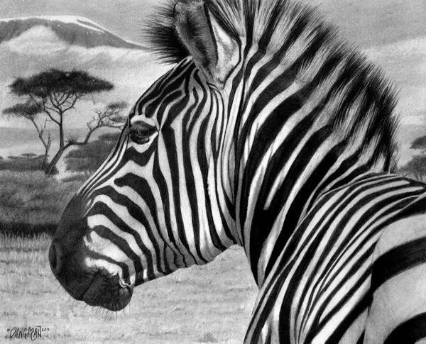 Рисунок карандашом. Tim Dangaran (56 фото)