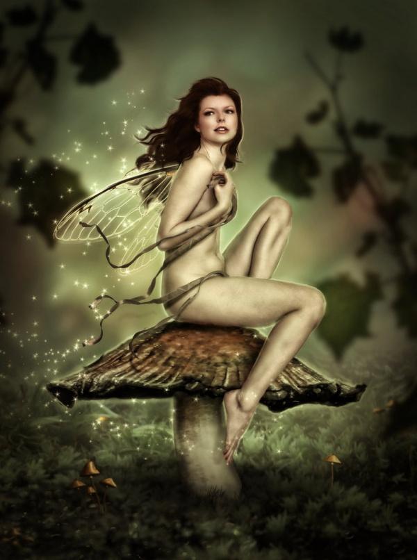 Digital Art: cборник арта автора brandrificus (49 фото)