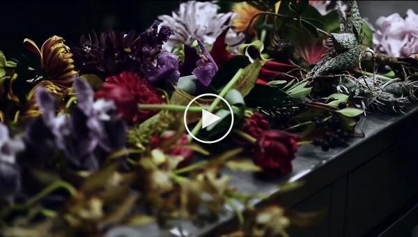 Обледенелые цветы