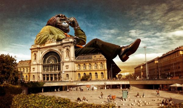 Венгерский художник Тамаш Гаспар (206 фото)