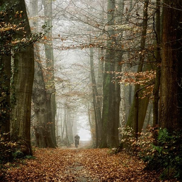 Фотограф Oer-Wout (218 фото)