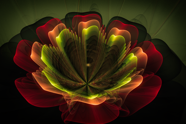 Stunning magic of fractal flowers (12 фото)