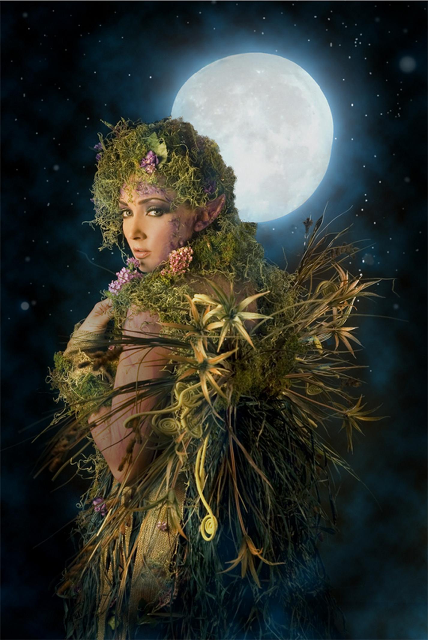 Sexy woodlen elf hentia photo