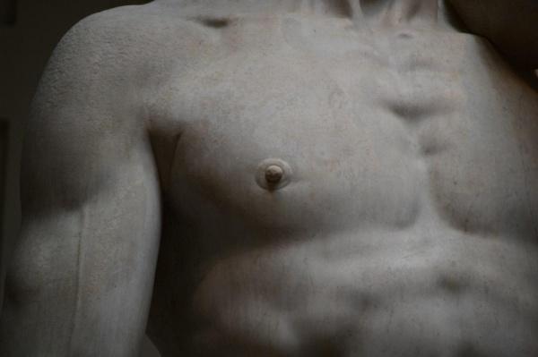 Давид Микеланджело в Академии Художеств во Флоренции, Италия (7 фото)