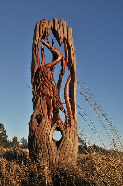 Деревянные скульптуры от Jeffro Uitto (6 фото)