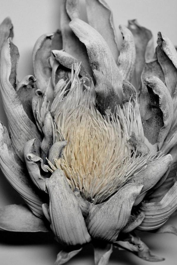 Скульптор Shingu Sayaka (9 фото)
