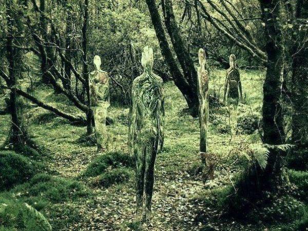 Стеклянные скульптуры-призраки в лесах Шотландии (10 фото)