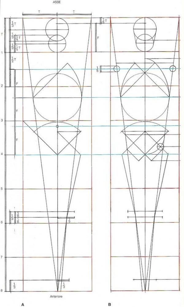 Анатомия. Основные пропорции и узлы (7 работ)