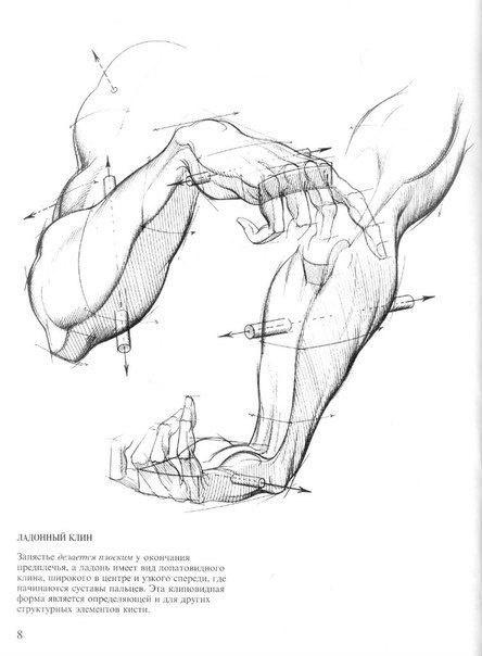 Бёрн Хогарт - Рисование динамичных рук для художников (135 работ)