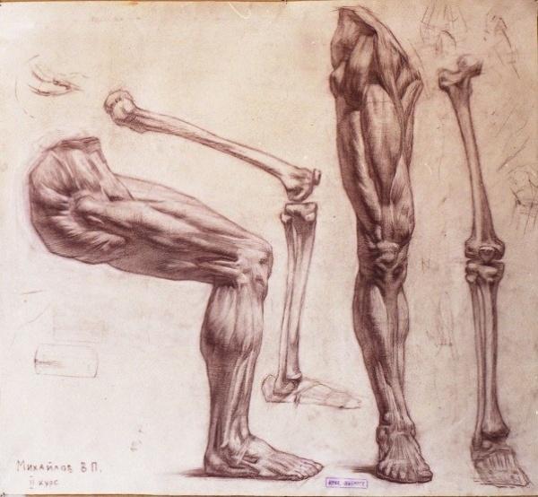 Подборка экорше (руки и ноги) (10 работ)