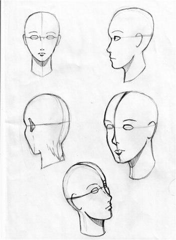 Учимся рисовать животных. Голова (906 работ)