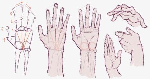 Учимся рисовать людей. Руки (1659 работ)