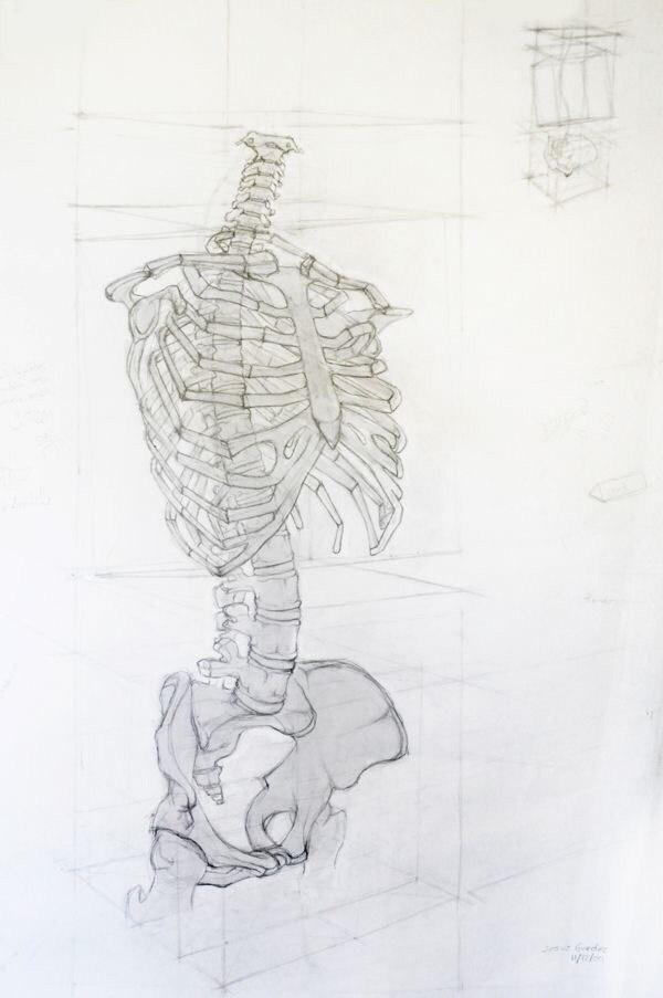Учимся рисовать людей. Скелет (10 работ)