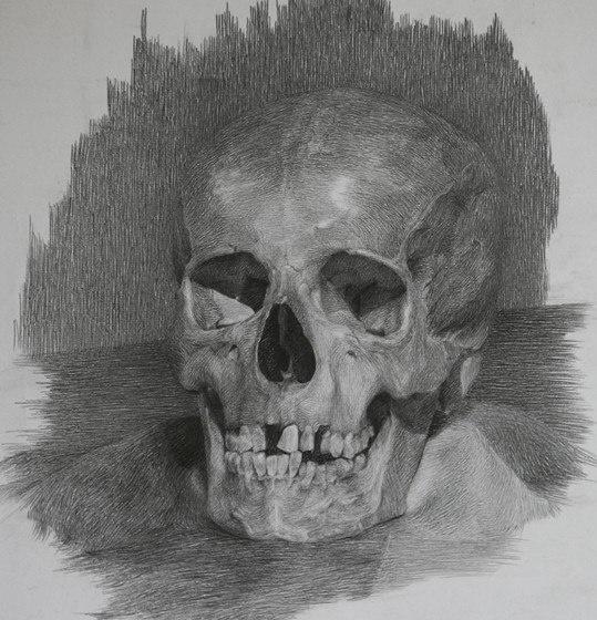 Учимся рисовать людей. Череп (23 работ)