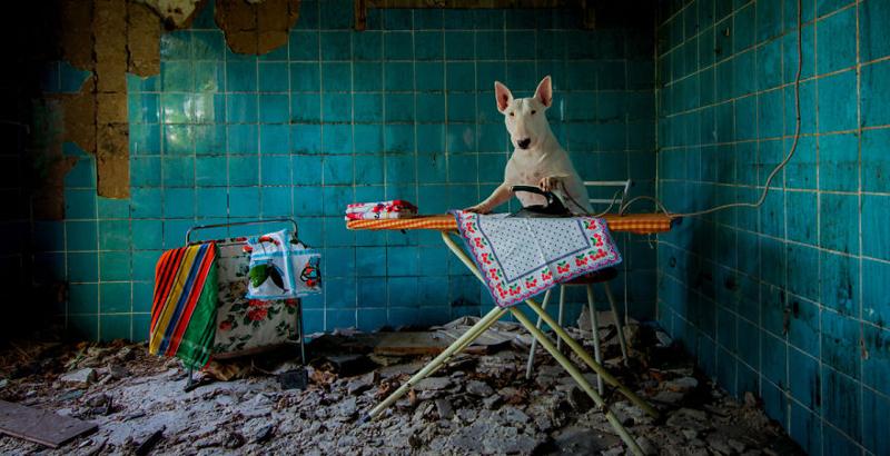 Фотограф и ее пес путешествуют по заброшенным местам в Европе (21фото)