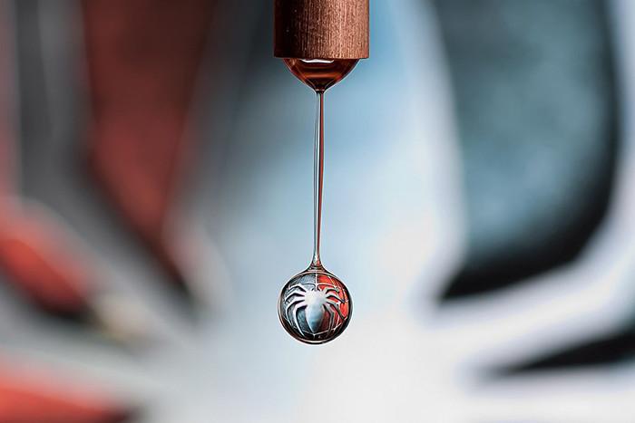 Как превратить крохотную каплю воды в шедевр (8фото)