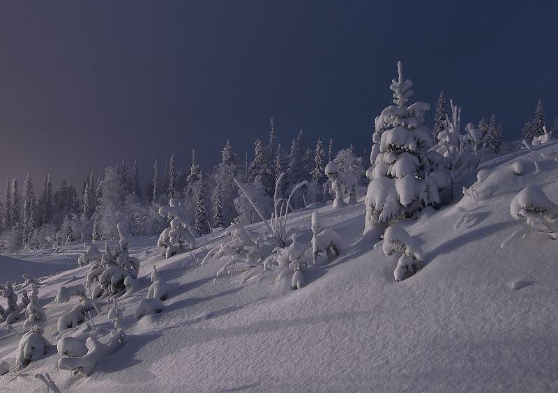 Зимние пейзажи от Максима Евдокимова (20фото)
