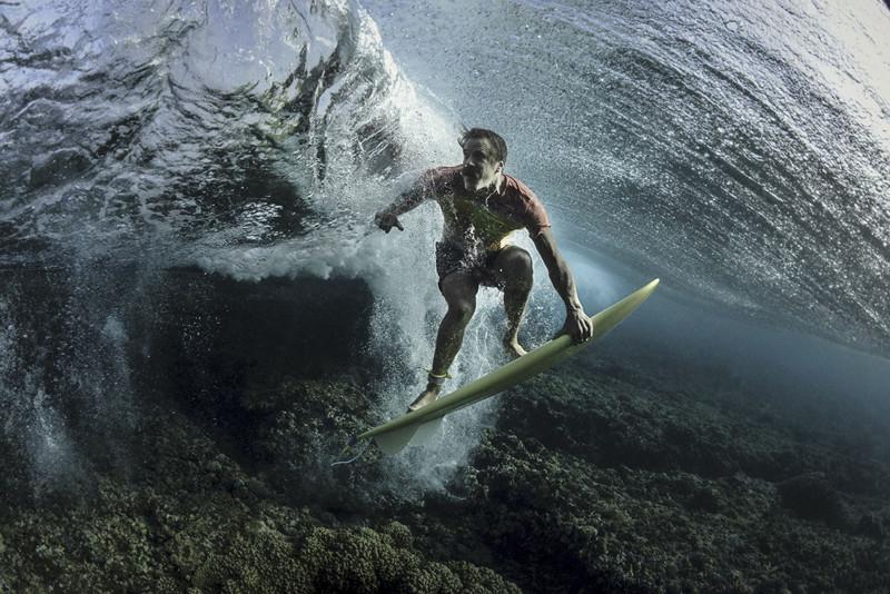 National Geographic определили победителей (18фото)