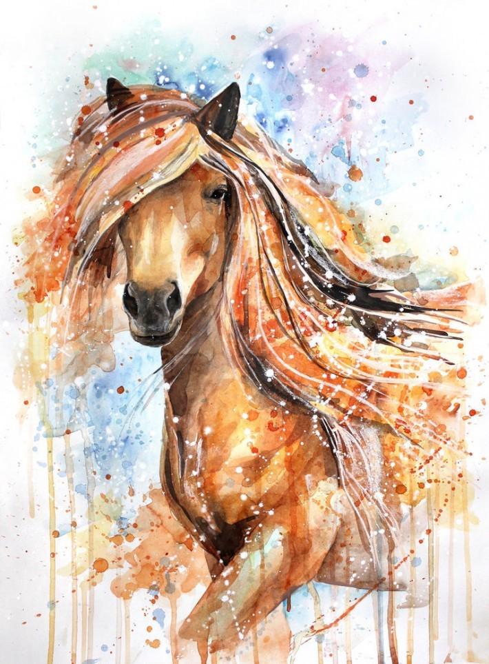 Лошади в акварельных рисунках елены швец (14фото)