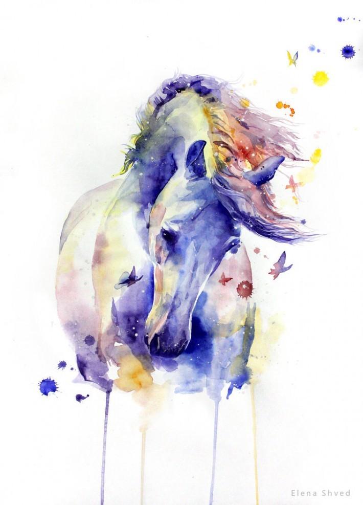 Красивые фото лошадей и девушек 4