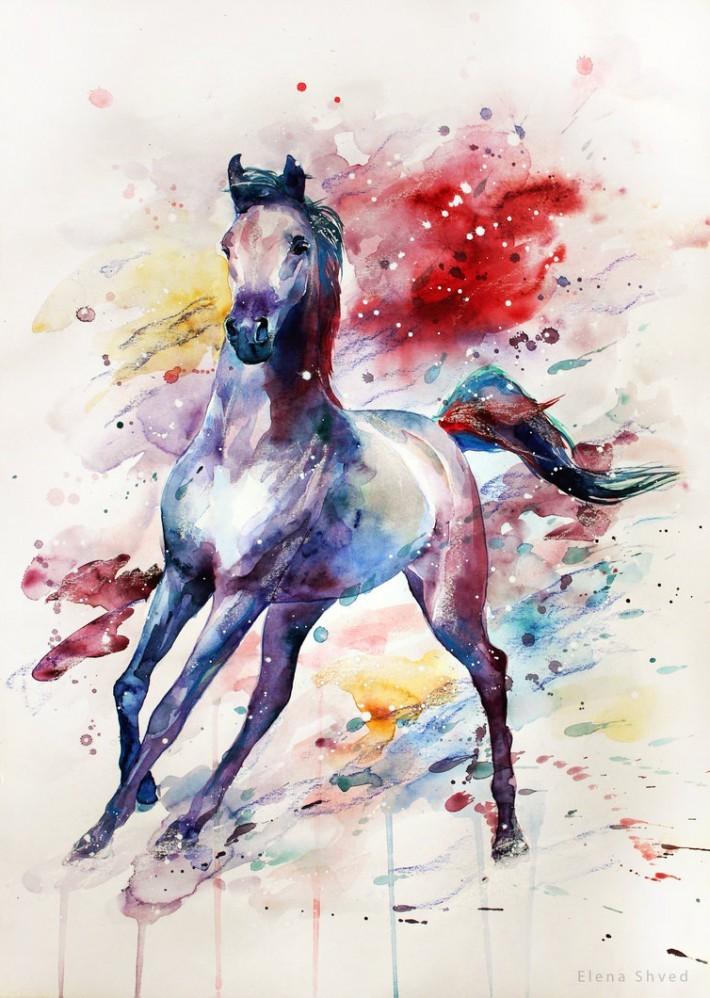 Красивые фото лошадей и девушек 6