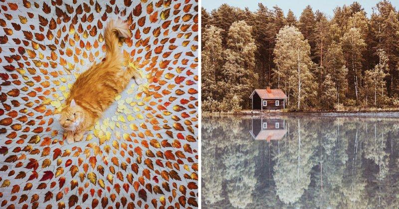 Она фотографирует красоту осени на нашей планете (34фото)