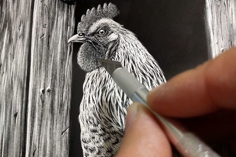 Гиперреалистичные портреты животных в технике скретчборд: это потрясающе! (22фото)