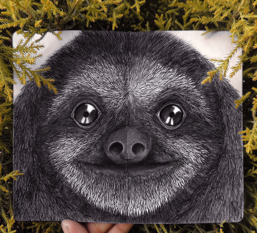 Парень делает потрясающие рисунки животных из Красной книги, призывая окружающих беречь природу