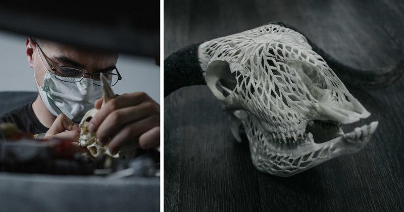 Румынский резчик по кости превращает черепа в произведения искусства (16фото)