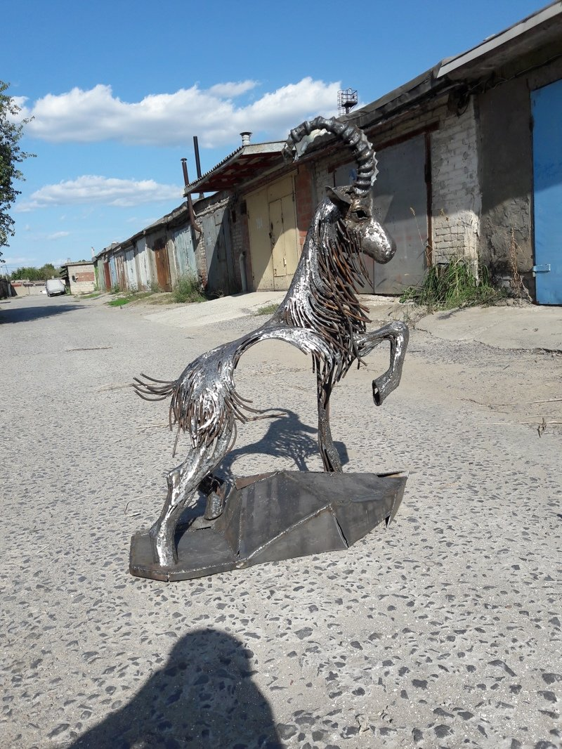 Горный козел (11фото)