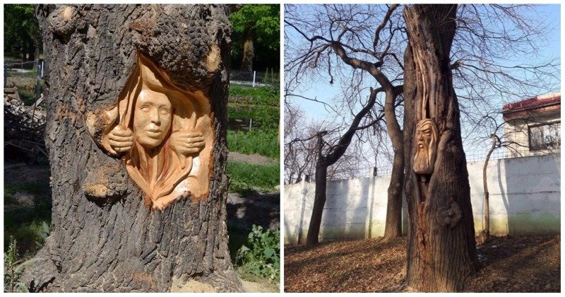 Румынский художник творит деревянные чудеса бензопилой (19фото)