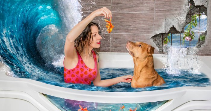 Собаки из приюта и их новый мир (7фото)