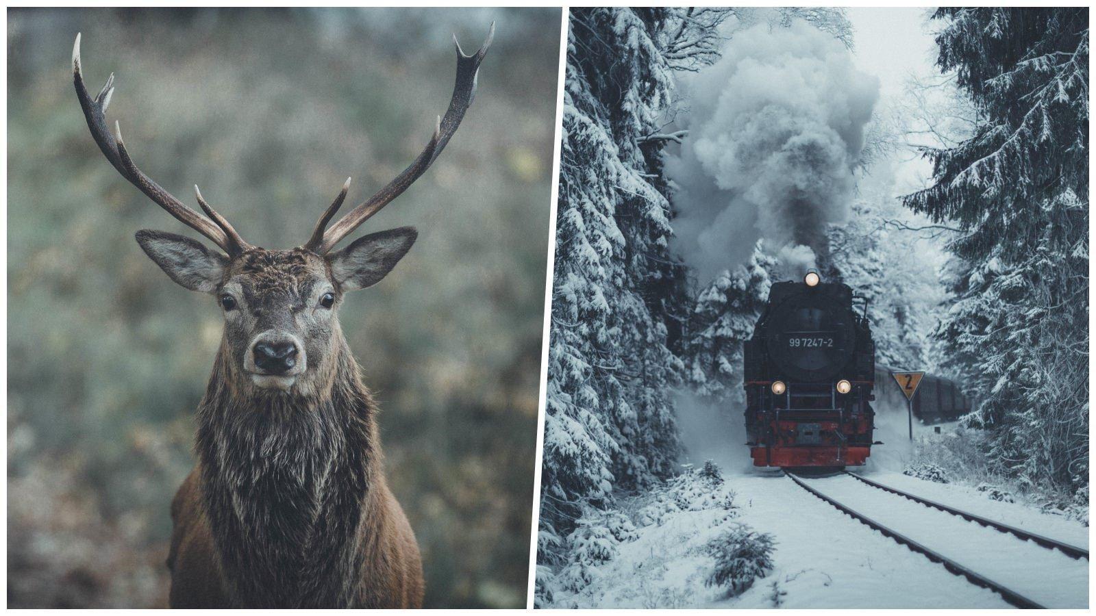 Шикарные северные пейзажи в объективе бельгийского фотографа (23фото)