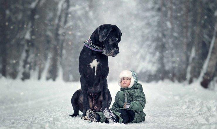 Маленькие дети Санкт-Петербурга и их огромные четвероногие друзья (9фото)