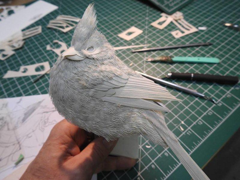 Художник изящно создает скульптуры животных из бумаги (19фото)