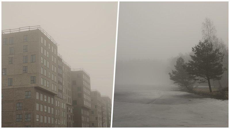 Тлен и безысходность в мрачных работах датского фотографа (21фото)