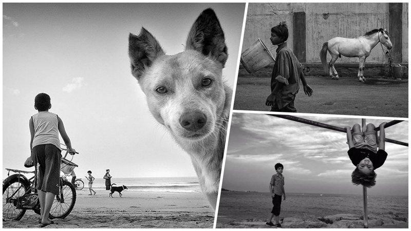 Шедевры уличной фотографии, в которых главное — это ракурс и композиция (31фото)
