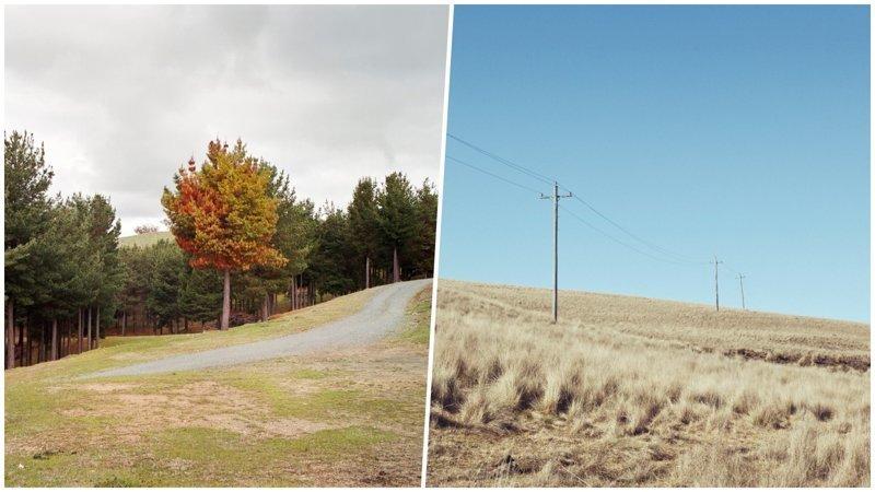 Красочные и уютные фотографии австралийской природы (26фото)