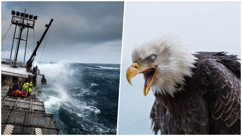 Кори Арнольд — матрос-фотограф из Аляски (21фото)