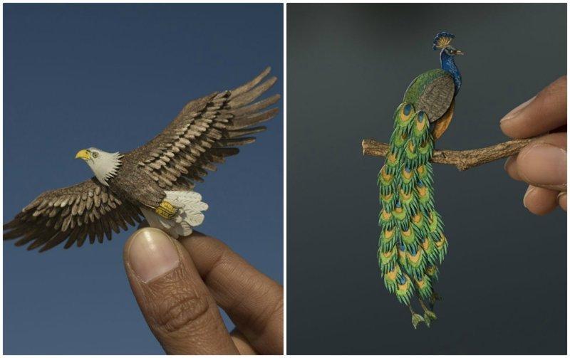 Индийские художники каждый день создают миниатюрных птиц из бумаги (30фото)