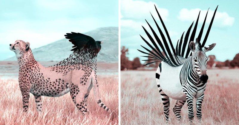 В мире сюрреализма: фантастические портреты животных, созданные французским художником в Photoshop (26фото)
