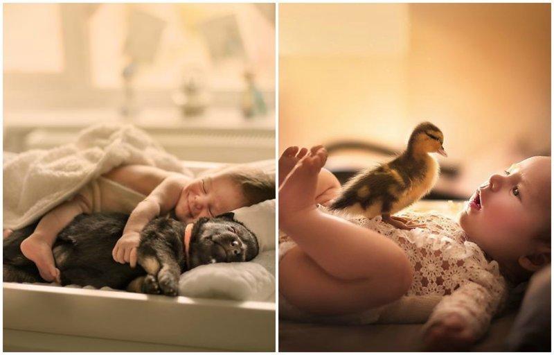 Сплошное умиление: индийский фотограф снимает малышей с животными (19фото)