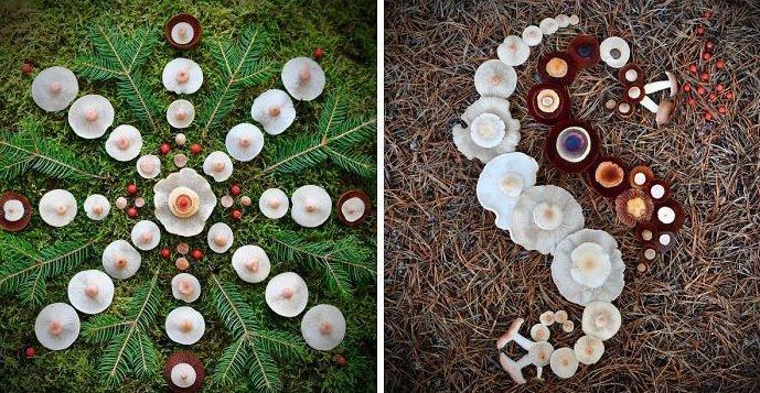 Шедевры природы: Финка создаёт картины из диких грибов (24фото)